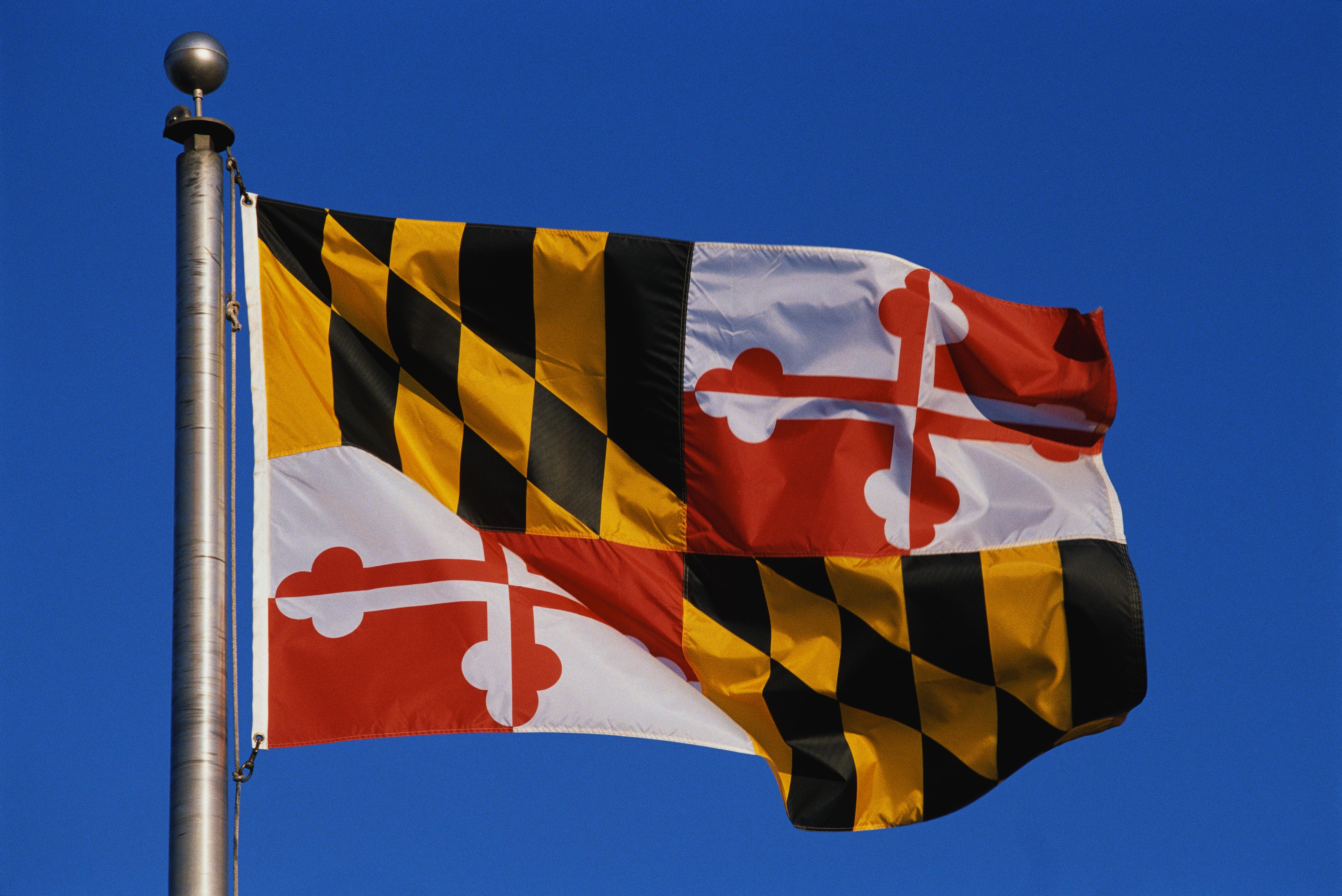 This is the State Flag flying on a flagpole against a blue sky. The flag has black and white checks with its symbol in the center.