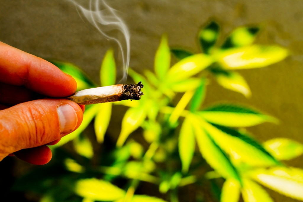 Weed Joint