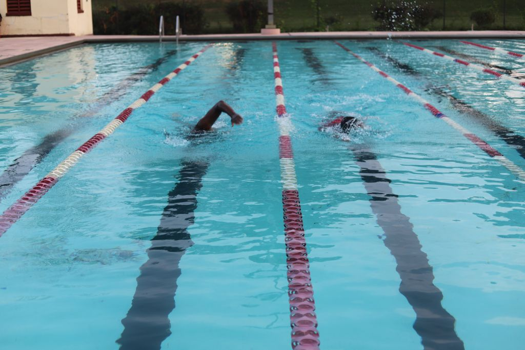 Animal House Pool Party