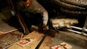 John Gloske of First Quality Pest Control checks rat traps in the attic of an Encino home. Last yea